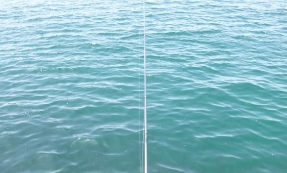 「 チヌ ( 黒鯛 ) 釣り入門 」 0314