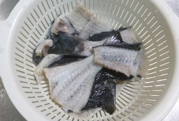 「 チヌ ( 黒鯛 ) 釣り入門 」 0331