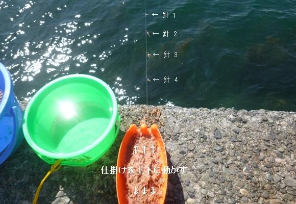 「 チヌ ( 黒鯛 ) 釣り入門 」 0360