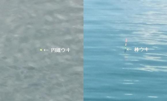 「 チヌ ( 黒鯛 ) 釣り入門 」 0377