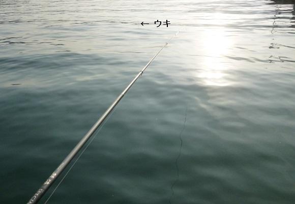 「 チヌ ( 黒鯛 ) 釣り入門 」 0383
