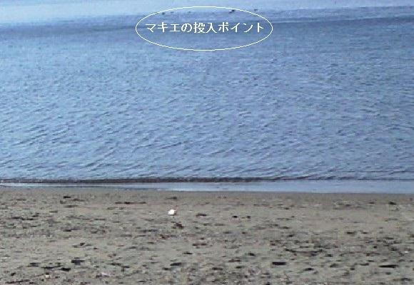 「 チヌ ( 黒鯛 ) 釣り入門 」 0396
