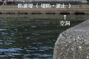 「 チヌ ( 黒鯛 ) 釣り入門 」 0403