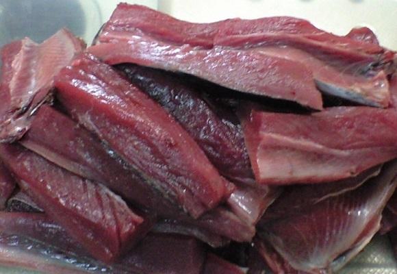 「 チヌ ( 黒鯛 ) 釣り入門 」 0454