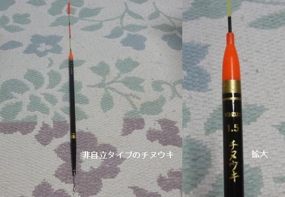 「 チヌ ( 黒鯛 ) 釣り入門 」 0491