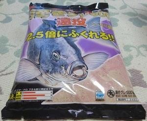 「 チヌ ( 黒鯛 ) 釣り入門 」 0498