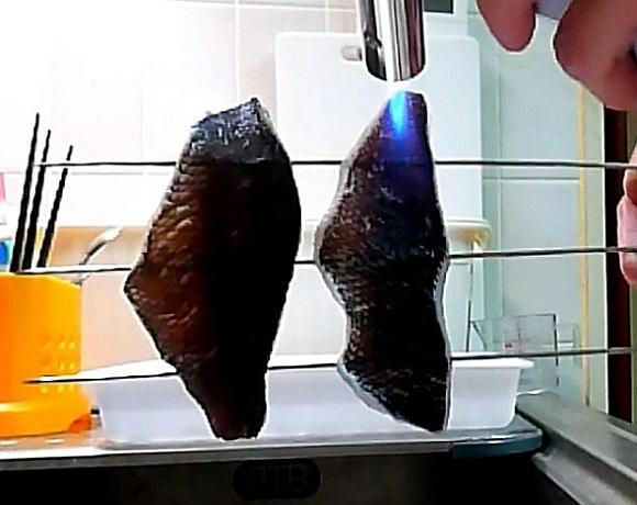 「 チヌ ( 黒鯛 ) 釣り入門 」 0050