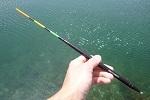 チヌ ( 黒鯛 ) 釣り入門 チヌ ( 黒鯛 ) 釣りの特化型釣法.jpg