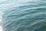 チヌ( クロダイ )のフカセ釣り「 アタリの取り方と見分ける判断法 」.jpg