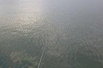 チヌ( クロダイ )のフカセ釣り「 釣れない理由と3つの対策方法 」.jpg