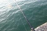 チヌ( クロダイ )のフカセ釣りや紀州釣りの仕掛け作りの小技とコツ.jpg