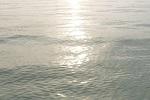 チヌ( クロダイ )釣り「 夏と秋の時期を攻略する釣行計画の立て方 」.jpg
