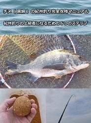 チヌ( 黒鯛 )の紀州釣り完全攻略マニュアル