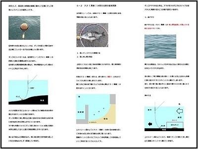 チヌ( 黒鯛 )の紀州釣り完全攻略マニュアル( ページの閲覧イメージ )
