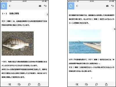 チヌ( 黒鯛 )の紀州釣り完全攻略マニュアル( 閲覧イメージ スマホ )