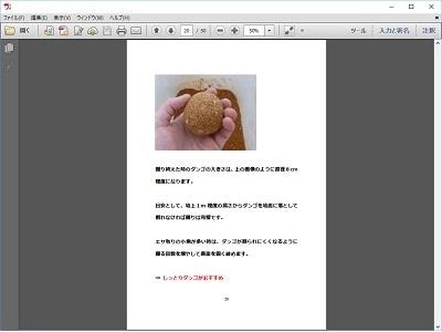 チヌ( 黒鯛 )の紀州釣り完全攻略マニュアル( 閲覧イメージ パソコン )