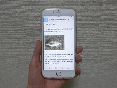 チヌ( 黒鯛 )の紀州釣り完全攻略マニュアル( 閲覧イメージ iPhone )