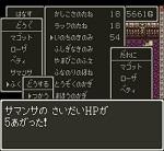 ドラゴンクエスト�V そして伝説へ... 木の実や種の使い方と上昇値の調査 150px.jpg